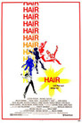 Cover for Hair